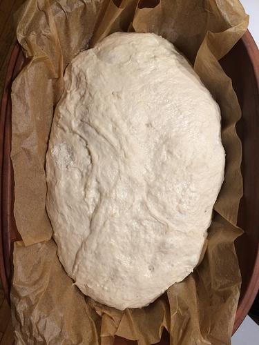 NK Bread Flour   Einkorn5_ proofed