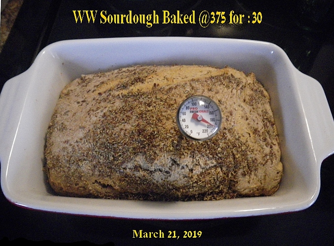 BakedLoaf~ThermCheck