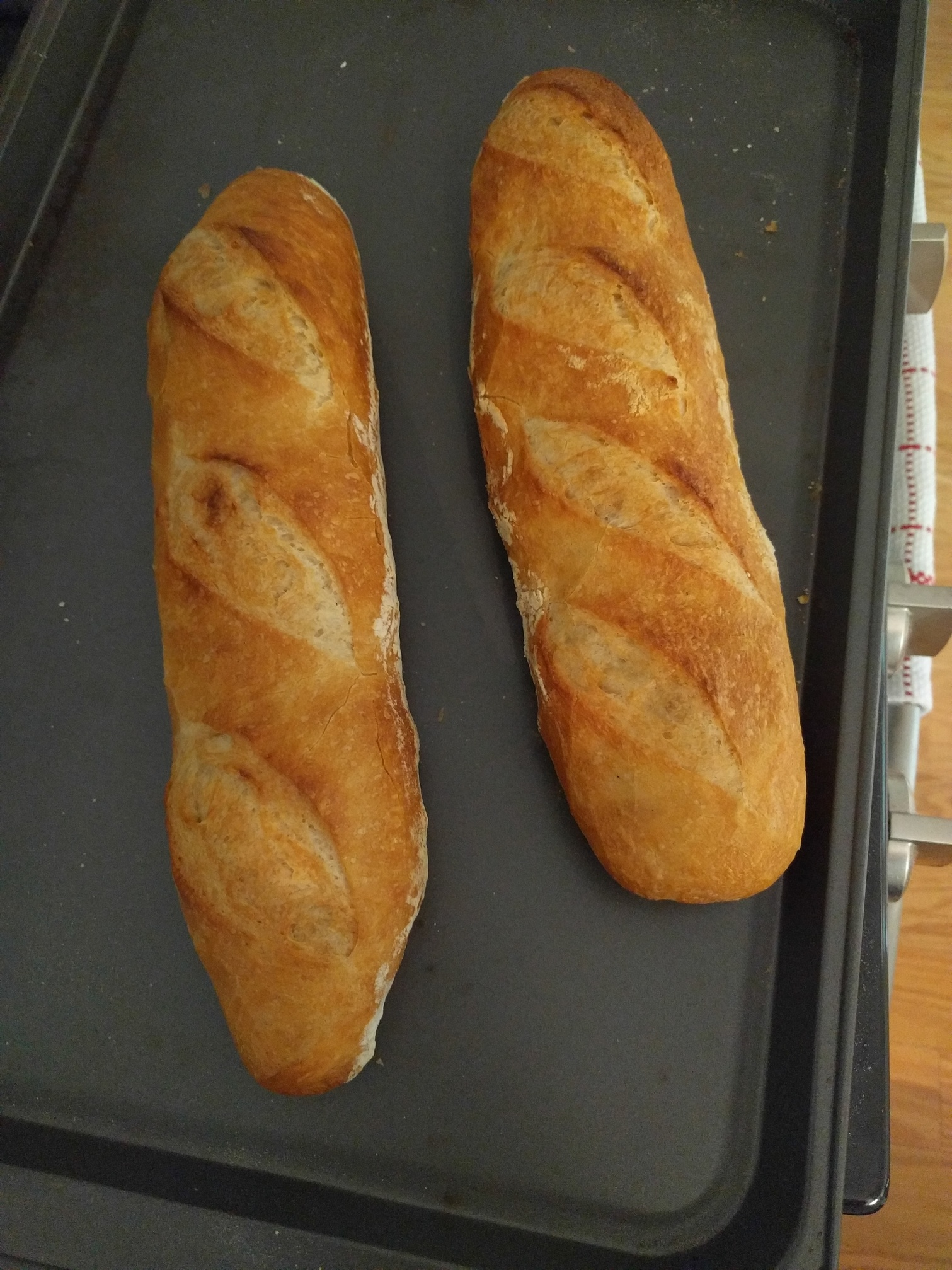 Almost No Knead Baguettes