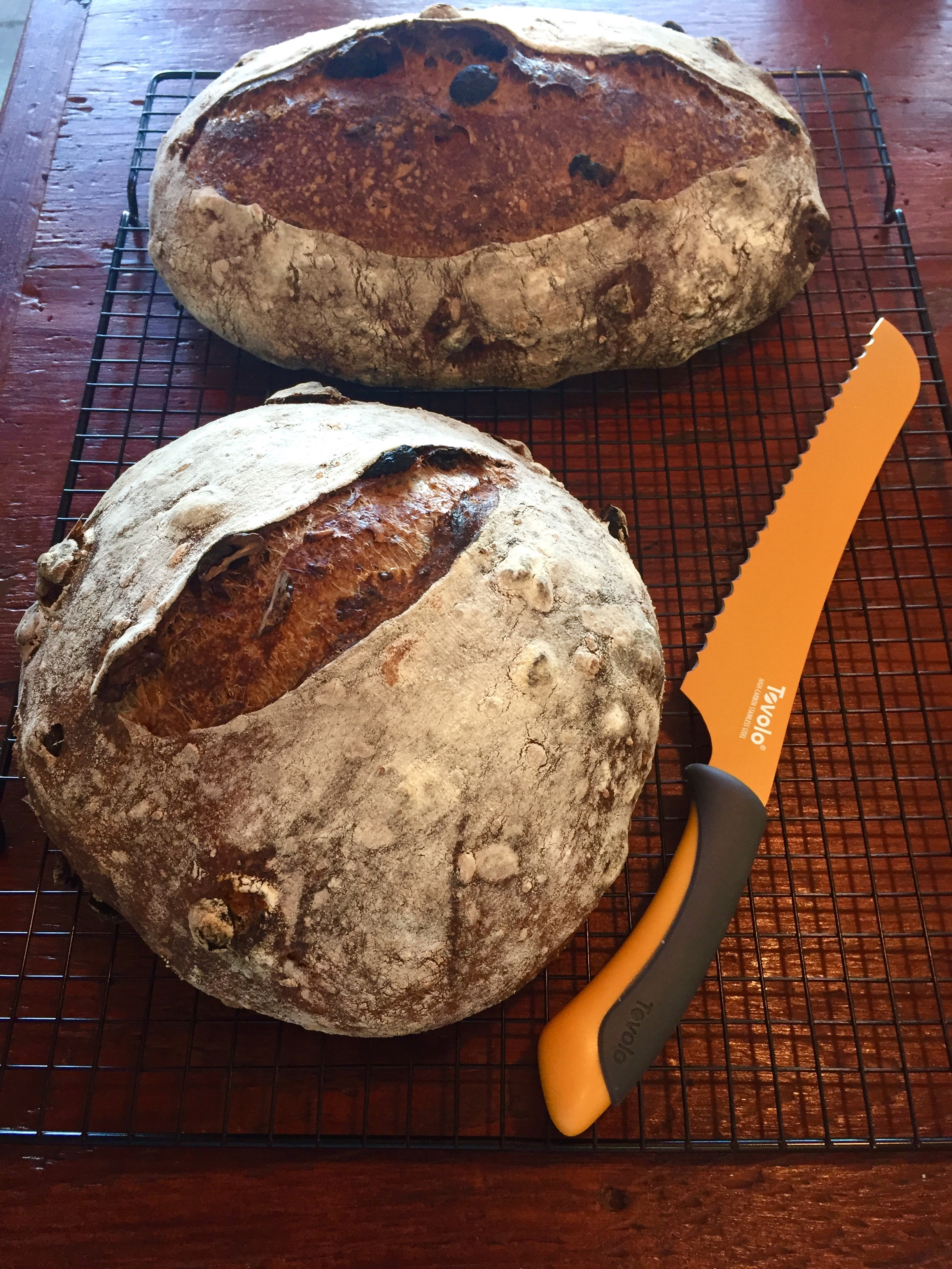 Best bread I ever made - Seeded Spelt Sourdough w/ Roasted Walnuts and Raisins - Reader Recipes ...
